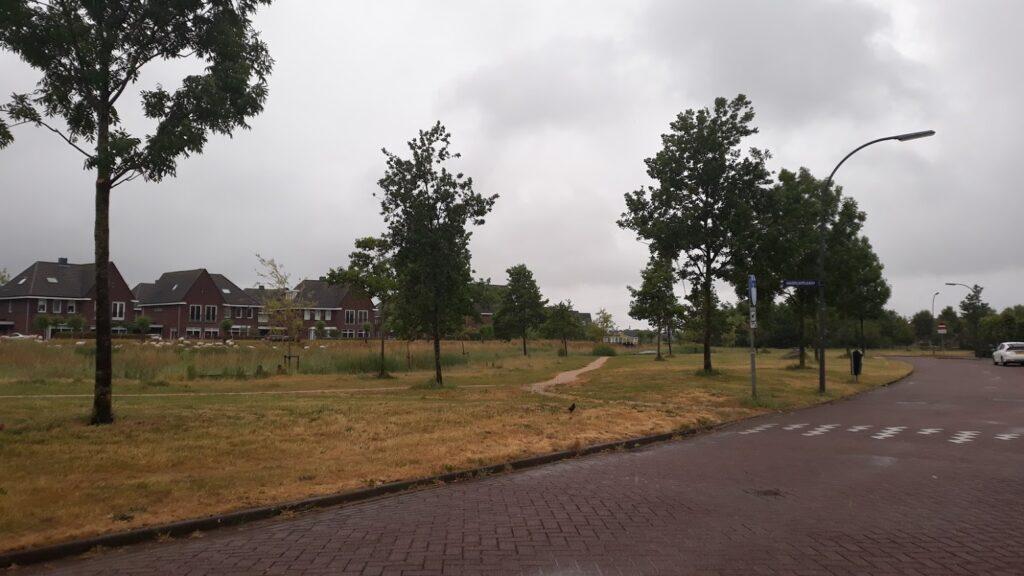 Haverkamplaan-Darse_Opp-12125_Date-20200604